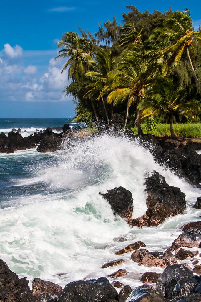 Hawaii-2016-Maui-1351.jpg